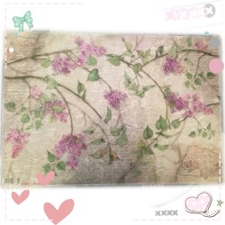 Feuille 48×33 LILAS